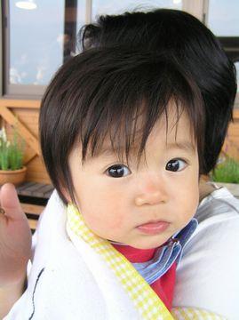 Shun050522seisenryo