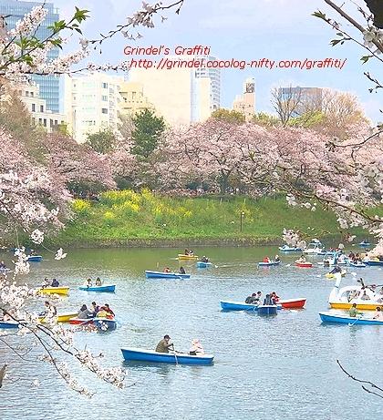 Tokyo190331sakura0