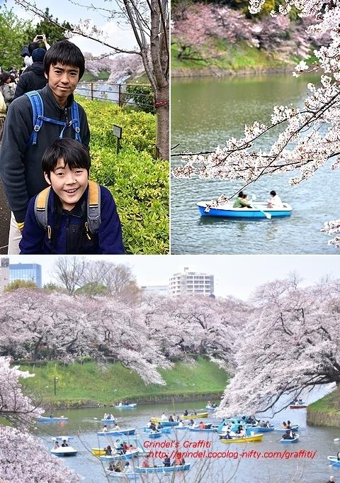 Tokyo190331sakura2
