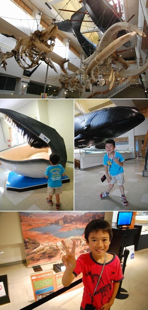 Shunharu120803whalemuseum2