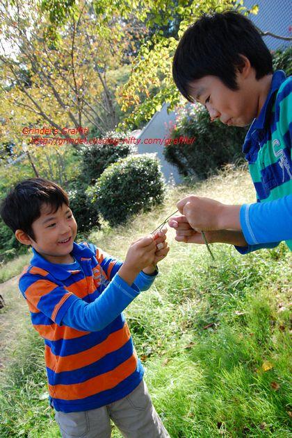 Shunharu140921dangozaka3