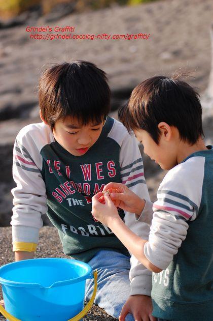 Shunharu141227miuraumi2