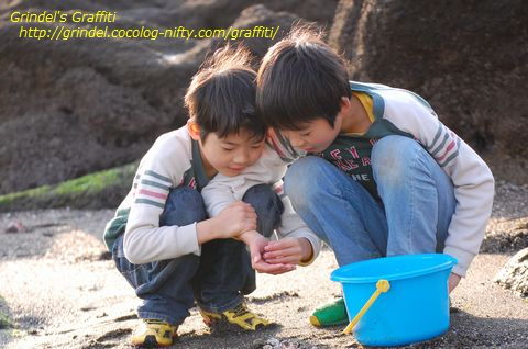 Shunharu141227miuraumi3