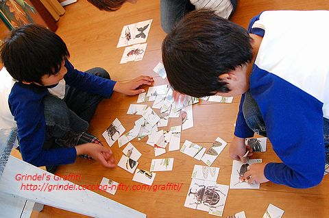 Shunharu150503greenworks3