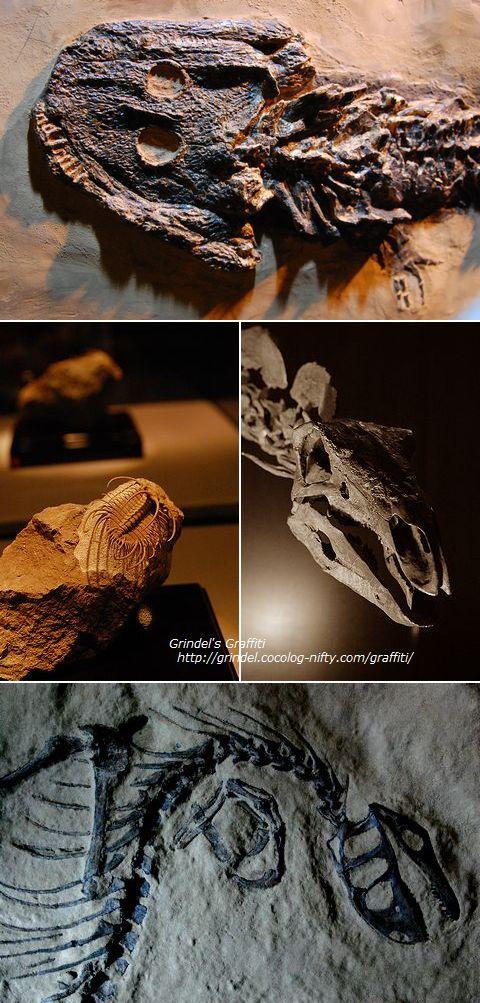 Dinoworld1