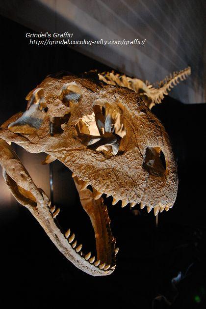 Dinoworld3