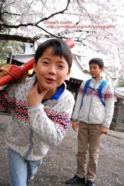 Shunharu160403sakura1
