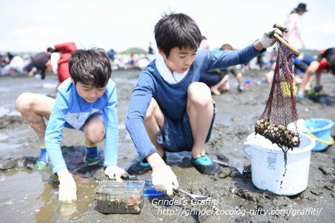 Shunharu160507shiohigari