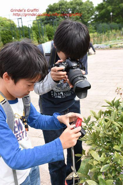 Shunharu160508minatooka
