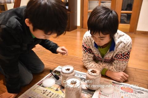 Shunharu161203ookuwayouchu