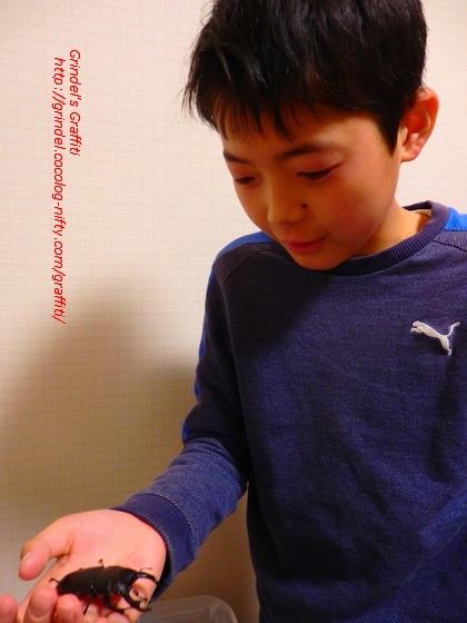 Haru180414ookuwagata