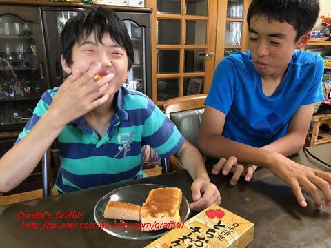 Shunharu180701cheesecake
