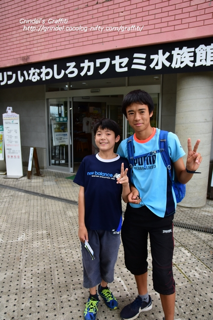 18tohoku_aquamarine8