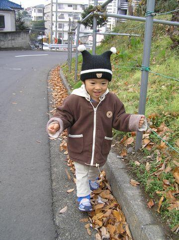 Shun061216sakusaku